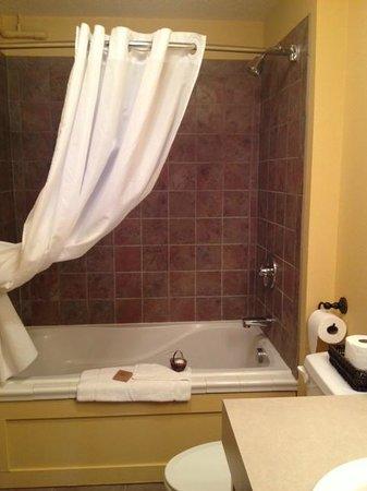 Iowa House Hotel - Ames: Shower area room 206