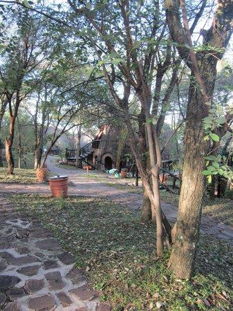 Serengeti Serena Safari Lodge: Grounds