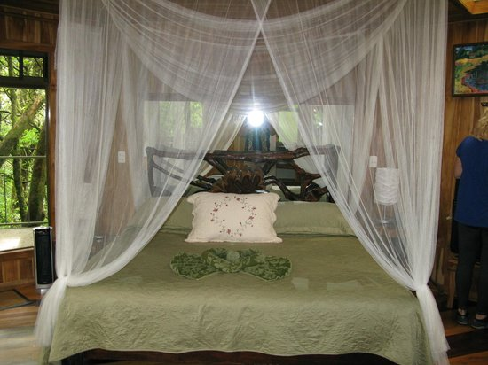 Pacific Trade Winds : Hidden Canopy Room Bed