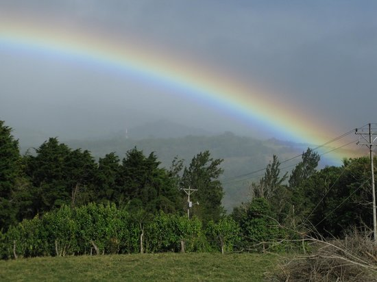 Pacific Trade Winds: Monteverde, CR rainbow