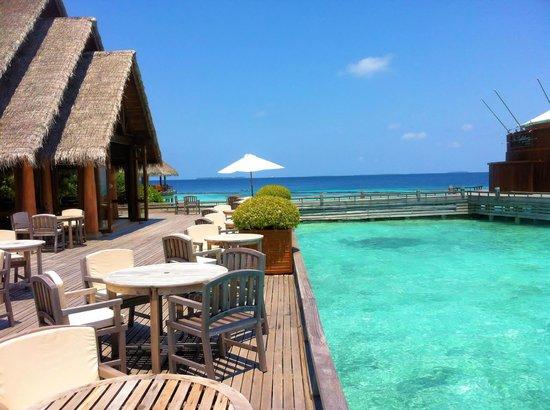 Baros Maldives: Lime Restauant