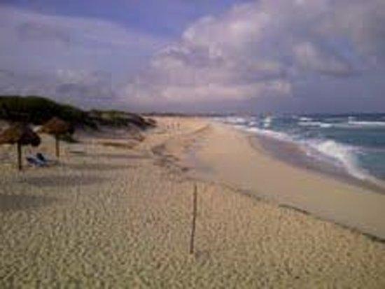 Ventanas al Mar: Palapa y arena alanca