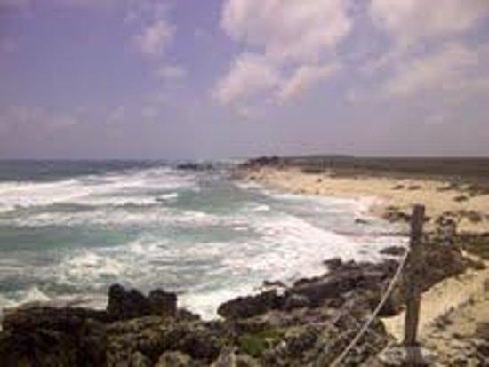 Ventanas al Mar: Desde el Balcon