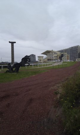 Wellington Racetrack (Wellington Renbaan)