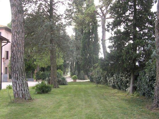 Agriturismo Borgo Laurice : il giardino