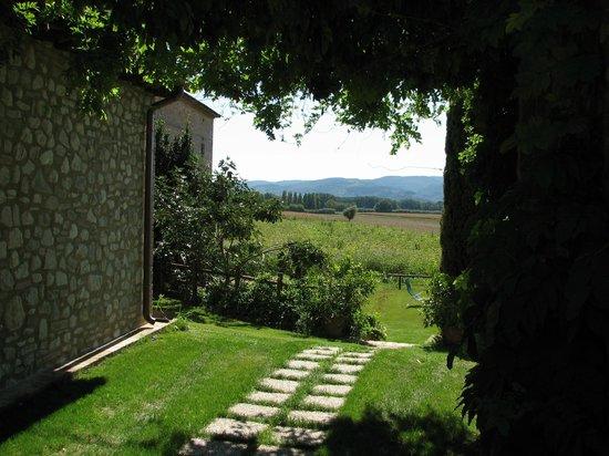 Agriturismo Borgo Laurice : la campagna
