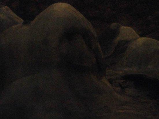 Cuevas de Valporquero: piedra con cara de mono
