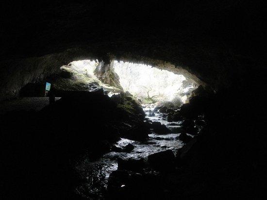 Cuevas de Valporquero: salida cueva