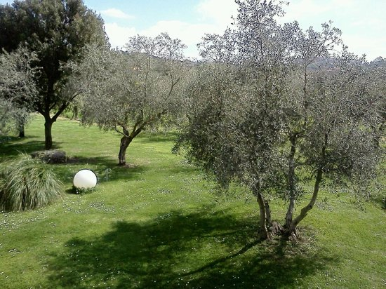 Villa Acquaviva: Questo è quel che ho visto aprendo la finestra della mia camera