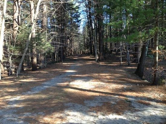 Wompatuck State Park: bike trail