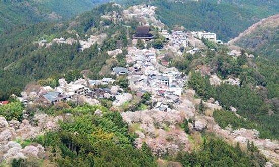 Foto de Nara Prefecture
