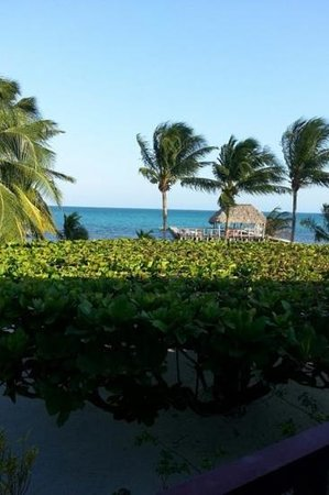 St. George's Caye Resort : view from the lodge