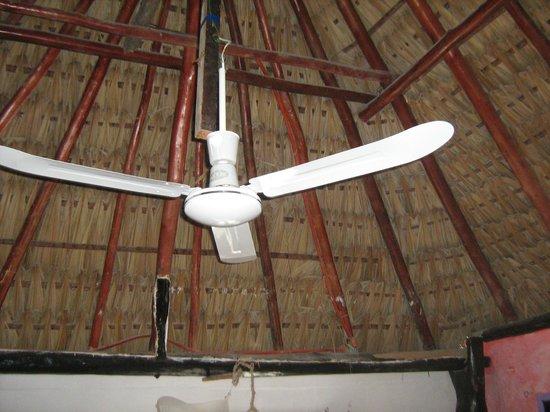 Hotel Palapas Las Gonzas : il ventilatore