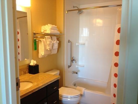 TownePlace Suites Ann Arbor: bathroom
