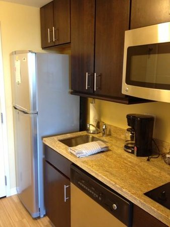 TownePlace Suites Ann Arbor: kitchen close up