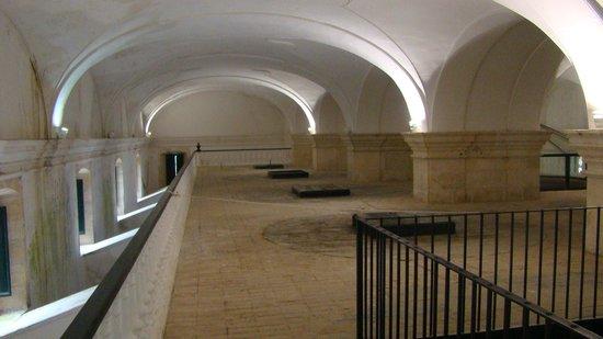 """Museo de la Cultura del Olivo : La bodega, """"la Catedral del Aceite"""" (wikipedia, user Pepepitos)"""