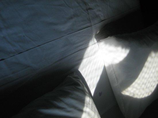Hotel Palapas Las Gonzas: la camera degli orrori