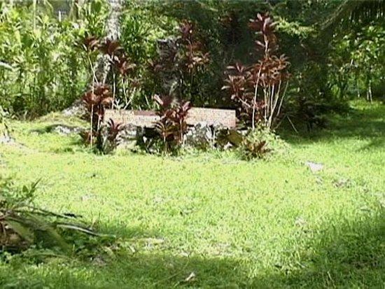 Arai-Te-Tonga Foto