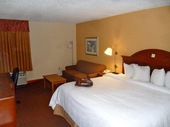 Hampton Inn Bonita Springs/Naples North: Room with a king bed and sofa