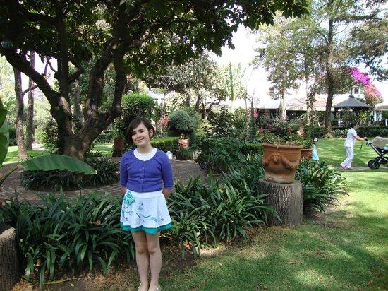 Restaurante Antiguo San Angel Inn : More garden shots