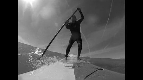 Sarasota Paddleboard Company : playing in the waves