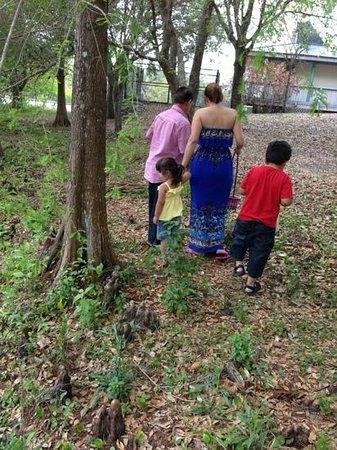 Tree Tops Park : recojiendo huevos