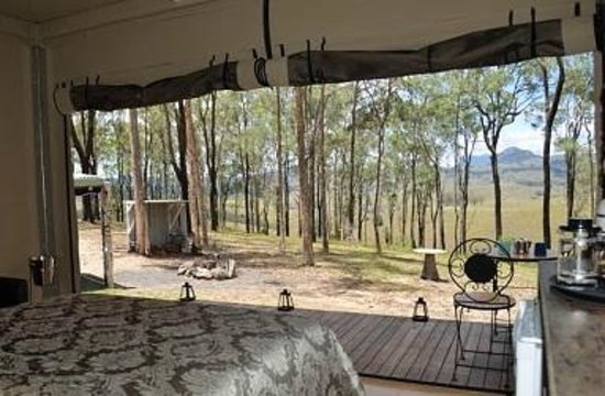 Ketchup's Bank Glamping: View from Knapps Eco-tent