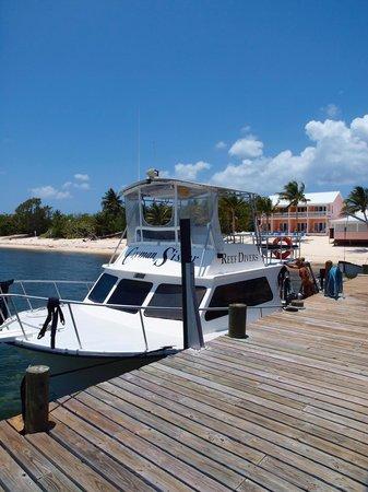 Soto Trader Wreck