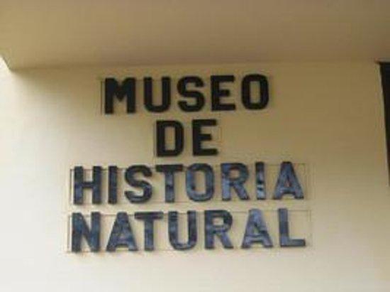 Parque De Museo De Historia Natural Asuncion Paraguay