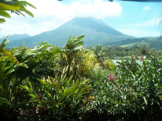 Arenal Manoa Hotel: Another view from our room