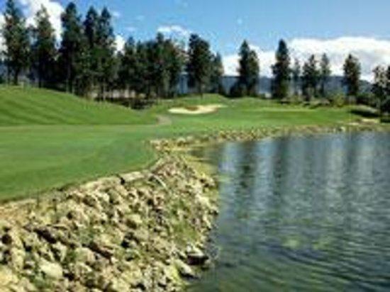 Broadmoor Public Golf Course Photo