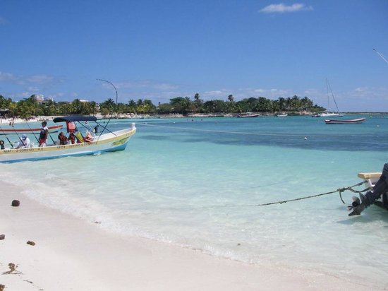 Hotel Akumal Caribe: View of beach from hotel property