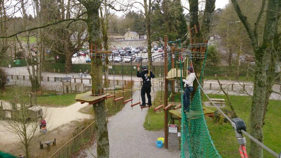 Castlecomer, Ирландия: tree top walk