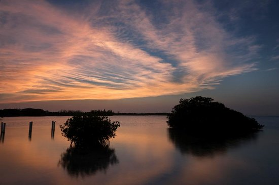 Caye Caulker, Belize: Small mangrove islands at sunset