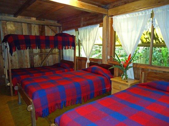 Cabanas Armonia y Jardin de Orquideas: Habitación con cuatro camas simples, rodeadas por el jardin de orquideas