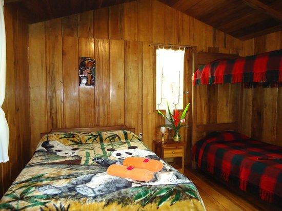 Cabanas Armonia y Jardin de Orquideas: Cabañas uno, para parejas, familias