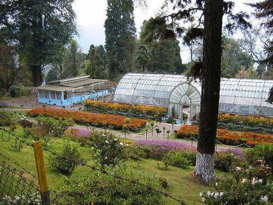 Lloyd Botanical Garden