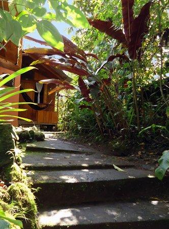 Cabanas armonia y jardin de orquideas updated 2018 for Cabanas para jardin
