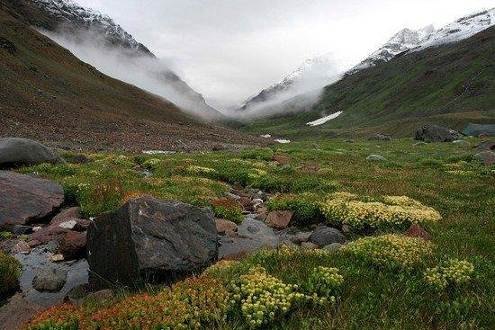 Pin Valley National Park (Lahaul and Spiti District) - Top ...