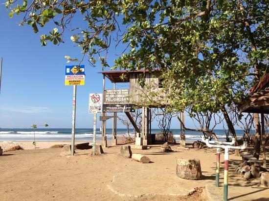 Playa Grande Park Hotel: short walk to incredible big, sandy, UNcrowded (Apr6-10,2013) beach!