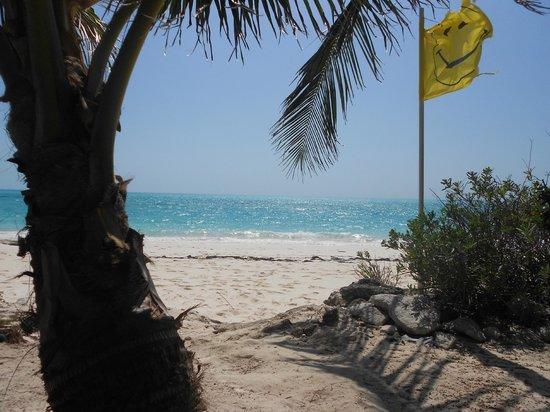 Tail Winds Resort: entering beach