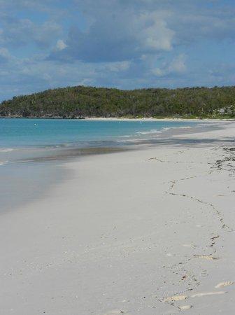 Tail Winds Resort: north beach