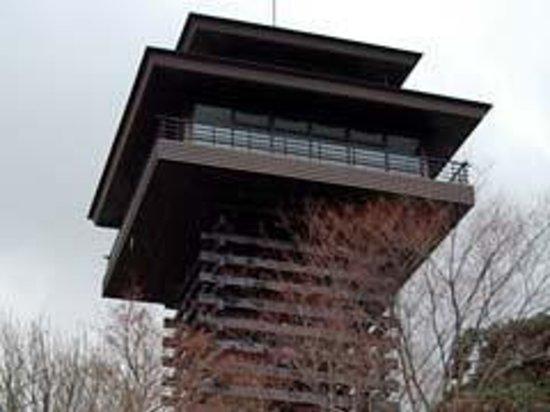 Foto de Gomasan Sky Tower