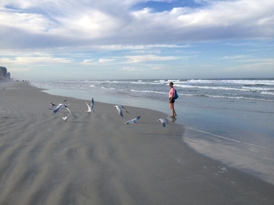تروبيكال ويندز أوشن فرونت هوتل: прогулка по пляжу