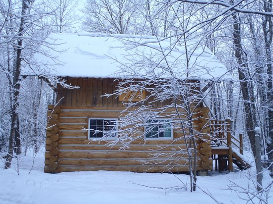 Wolf Den Hostel & Nature Retreat: Loon Cabin....It snowed all night long