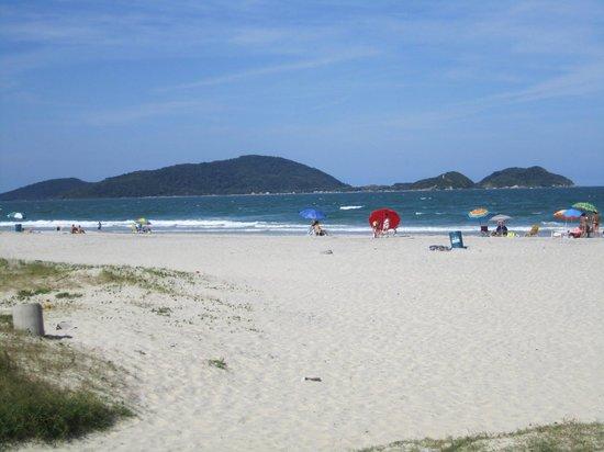 Cotinga Island