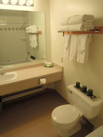 Homestead Inn: Wash Room