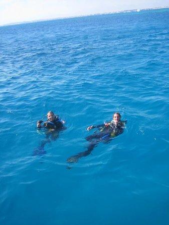 SEAWOLF - Divers Photo