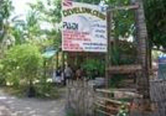 Divelink Cebu