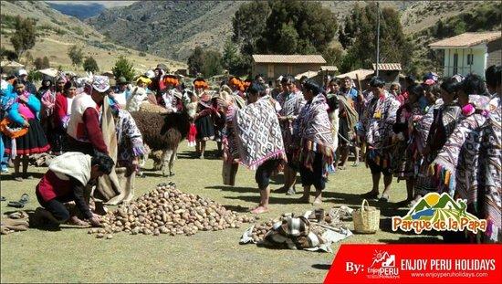Potato Park Peru